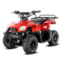 Cuatrimoto APOLLO FOURTRAX AGA 4 110cc